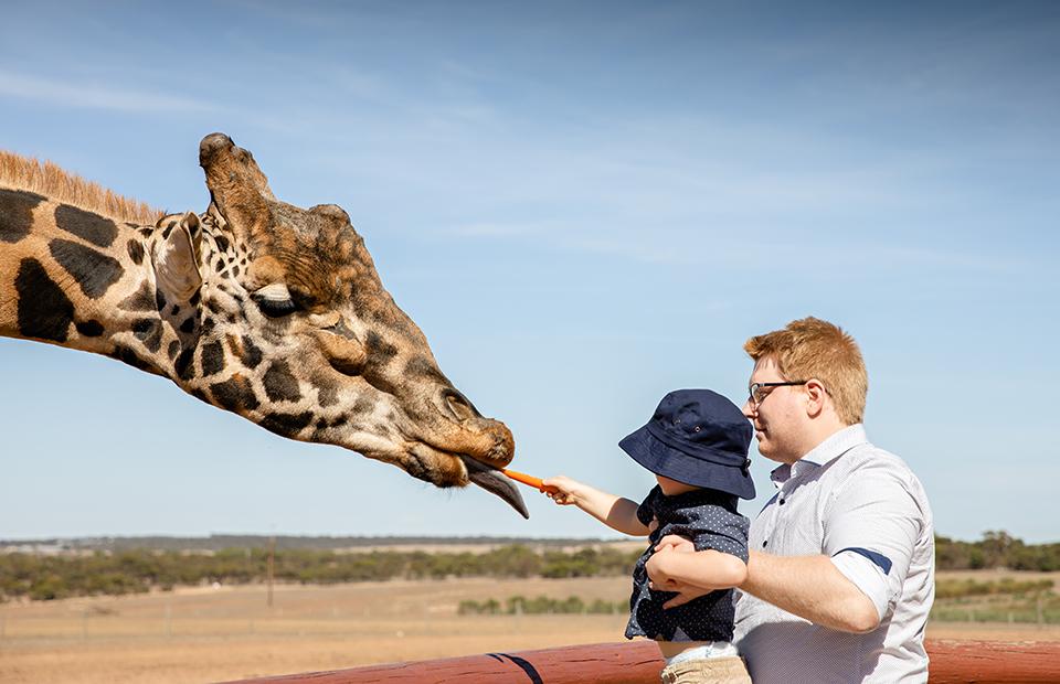 Monarto Zoo Father's Day record