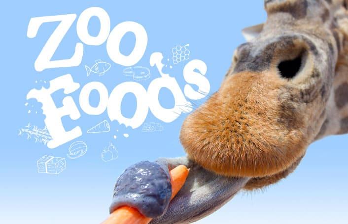 Zoo foods